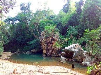 Phong Nha Ke-Bang National Park